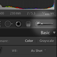 Mastering the Lightroom Adjustment Brush