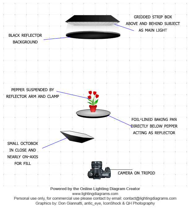 Here is a diagram of the setup. Pretty simple, just 2 lights, a background, and reflector.