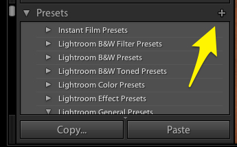 Press the plus button at the upper right corner of the preset panel to save a new preset.