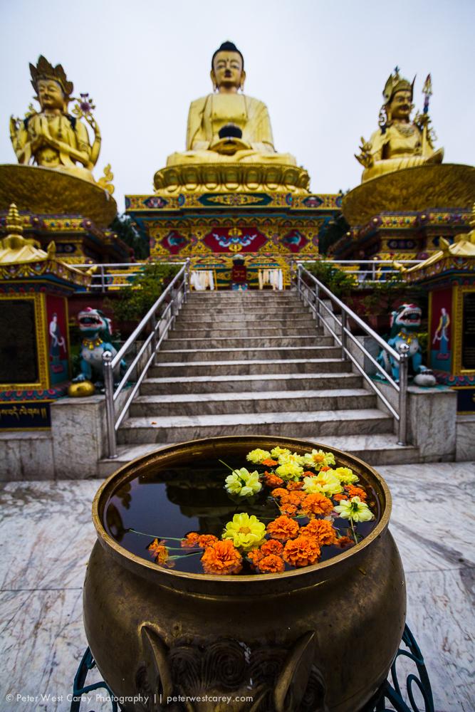 PeterWestCarey-Nepal2011-0929-8483