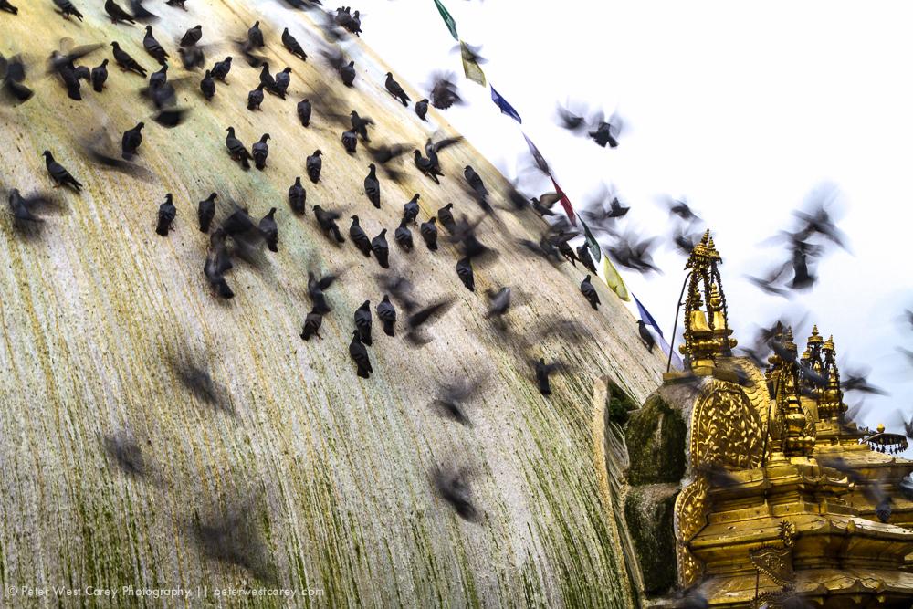 PeterWestCarey-Nepal2011-0929-8553