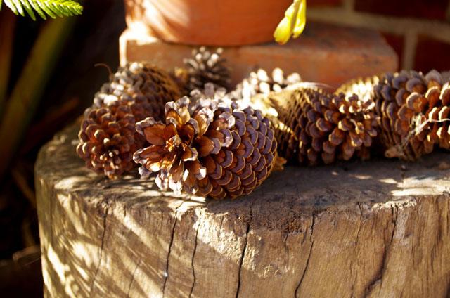 pine178example