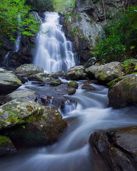 Cadence of April - Spuce Flats Falls in spring, Great Smoky Mountains National Park, Tennessee