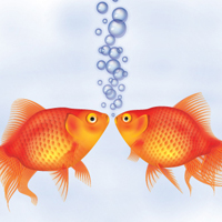 Preview for How to Create a Detailed Goldfish Couple with Adobe Illustrator